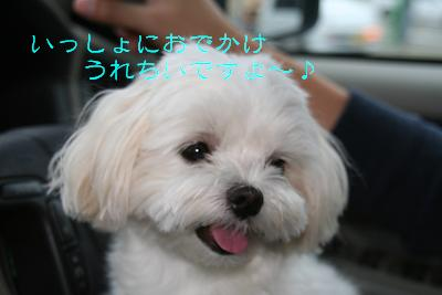 IMG_3646東海3