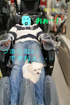 IMG_3887映画3ぱぱ