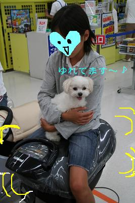 IMG_3890映画4