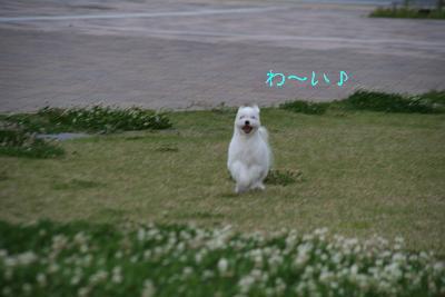IMG_3899映画6