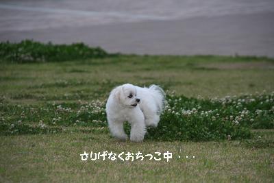 IMG_3908映画8