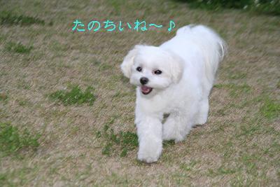 IMG_3913映画9