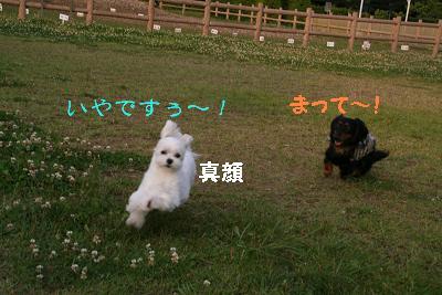 IMG_3940映画12
