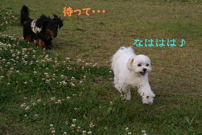 IMG_3942映画13