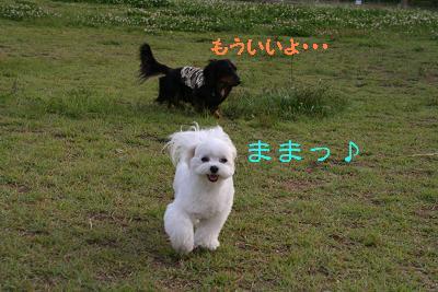 IMG_3944映画14