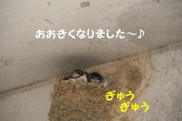 IMG_3961おやつ8
