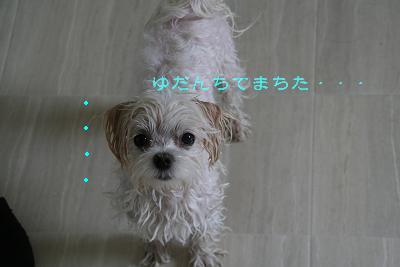 IMG_3973お風呂1