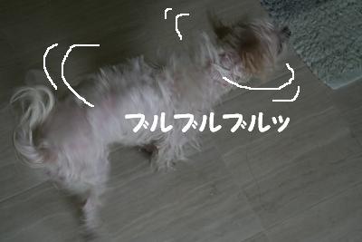 IMG_3975お風呂3