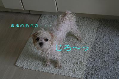 IMG_3976お風呂4