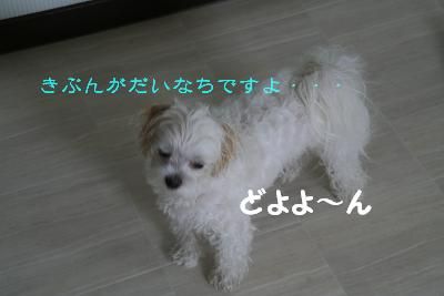 IMG_3981お風呂6