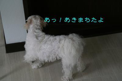 IMG_3983お風呂7
