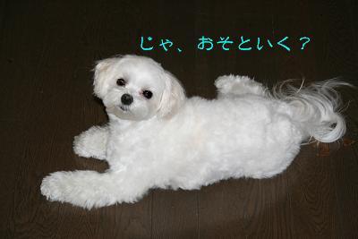 IMG_4086お風呂9