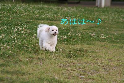 IMG_4181おひさ3