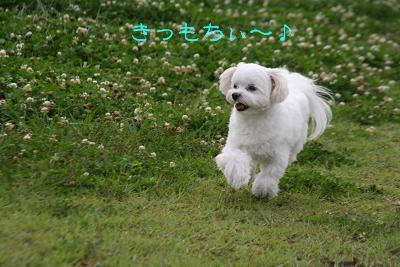 IMG_4204おひさ8