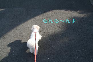 IMG_4277砂肝1