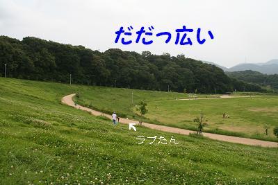 IMG_4453グリ7