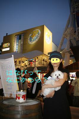 IMG_5399花火9