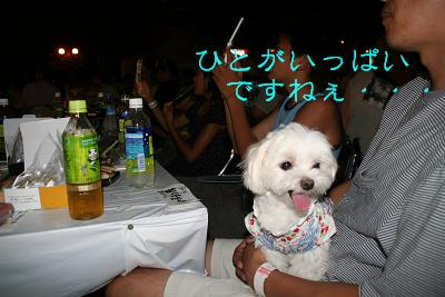 IMG_5406花火13