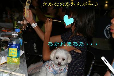 IMG_5426花火14