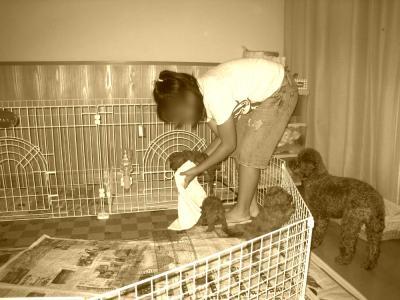 2008年7月29日№2