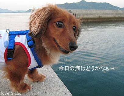 海を見つめて