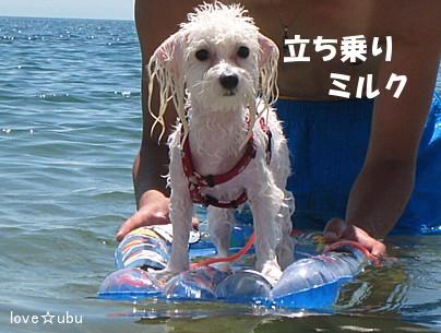 海-2008-⑤