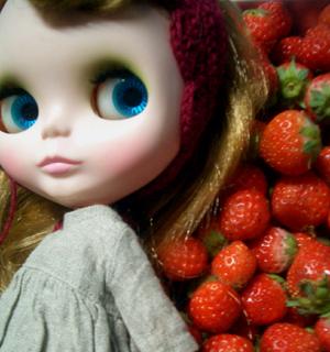 イチゴ祭り。