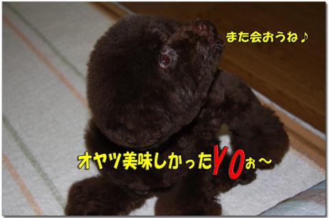sakuraママからのプレゼント7