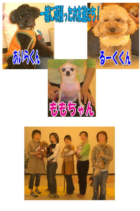 うめちゃんとYOGA7