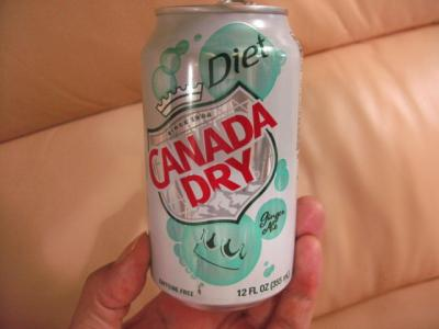 diet ginger ale 1