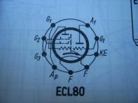 ECL80
