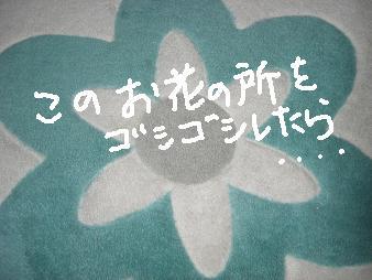 ichimo5.jpg