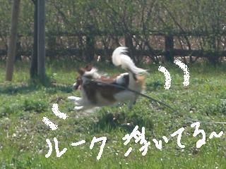 riyo10.jpg