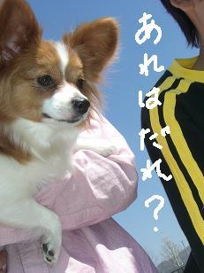 riyo4.jpg