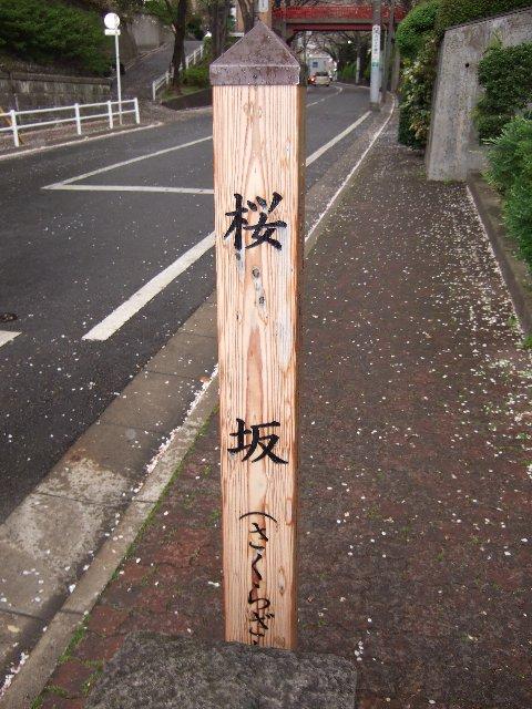 富士山 076