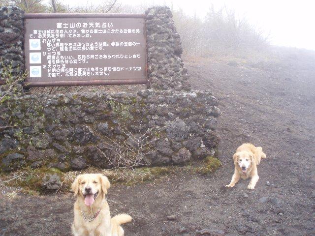 富士山 157
