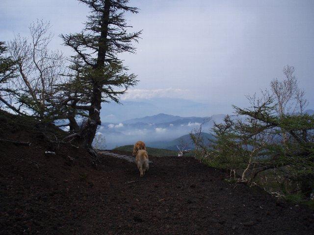 富士山 191