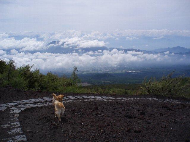 富士山 207