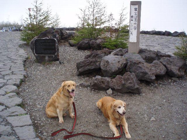 富士山 248