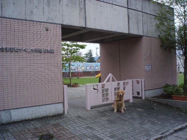 富士山 266