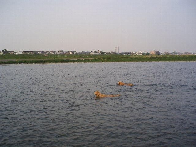 多摩川 007
