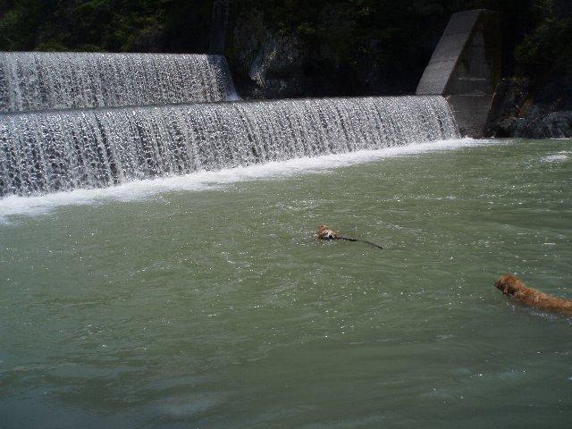 丹沢湖 030