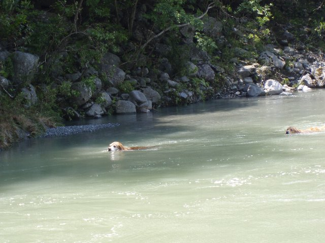 丹沢湖 051