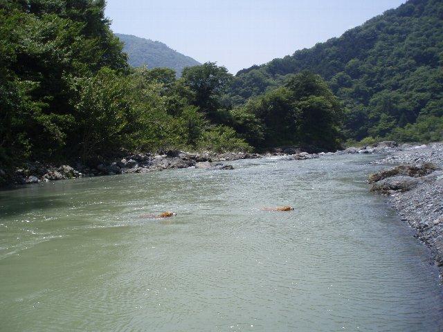 丹沢湖 055