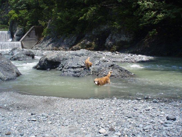 丹沢湖 058