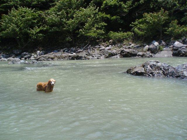 丹沢湖 060