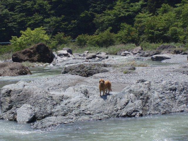 丹沢湖 064