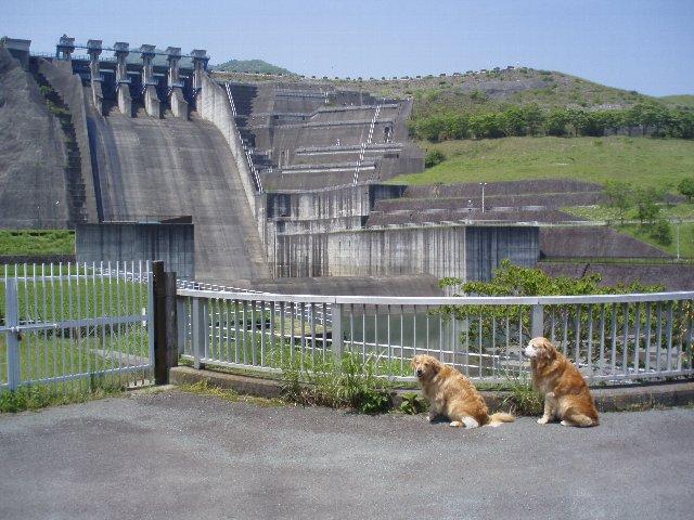 丹沢湖 076