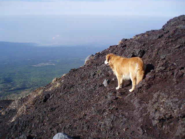 富士山8合目 041