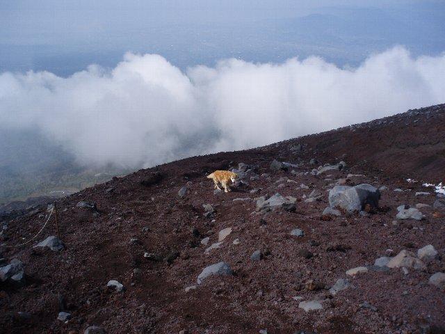 富士山8合目 098